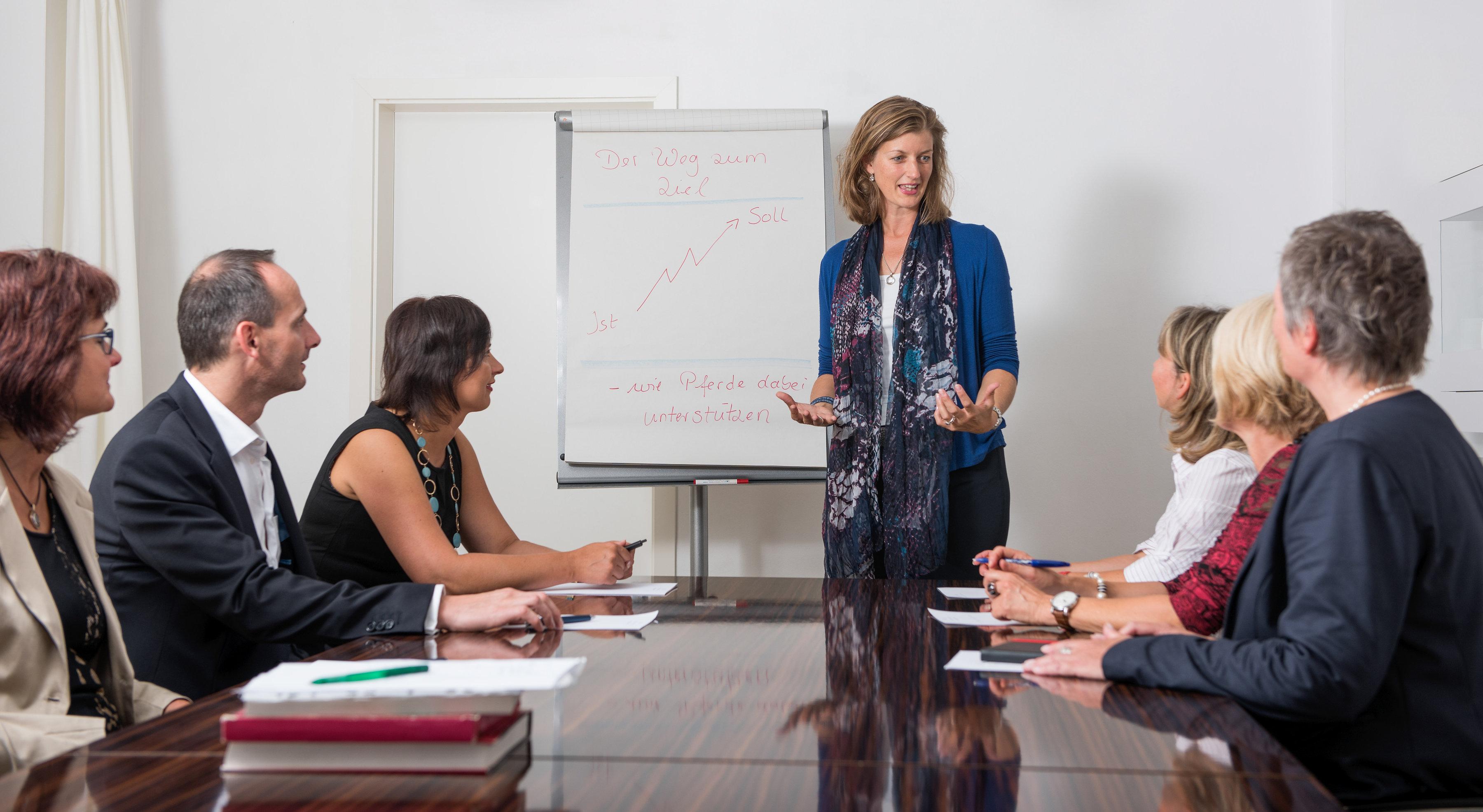 """Seminarreihe """"Professionell kommunizieren – Grammatik von Entwicklung und Kommunikation erkennen und nutzen"""" (Mai-Okt. 2019)"""